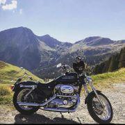 Harley Davidson Sportstar 883