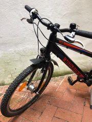 Puky Fahrrad 24 Zoll 8