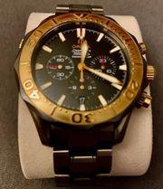 Omega Seamaster Gold Titan