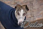 Dulce möchte mit ihrer Familie
