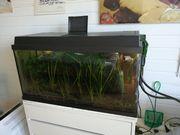 Aquarium incl Eheim Aussenfilter und