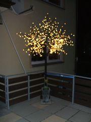 Kirschblütenbaum beleuchtet mit 600 LED