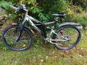 Mountainbike 26er McKenzie 21--Gang Scheibenbremse