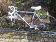 Rennrad - Fahrrad Bianchi