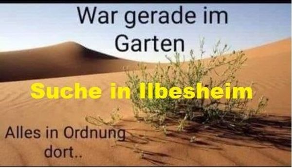 Suche Ilbesheim Landau am Bach