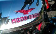 Suche Moto Guzzi Le Mans