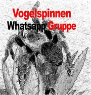 Vogelspinnen Whatsapp Gruppe