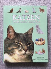 Katzen Rassen Pflege Geschichte Buch