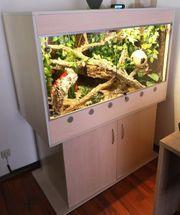 Holzterrarium furniert Versiegelt mit Unterschrank
