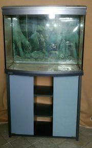 Aquarium mit Unterschrank --Beleuchtung defekt--
