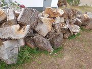 Brenbaumholz
