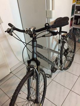 Damenfahrrad Citybike: Kleinanzeigen aus Ettlingen - Rubrik Damen-Fahrräder
