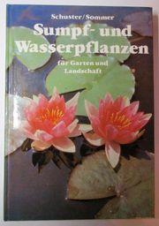 Sumpf- und Wasserpflanzen von Schuster