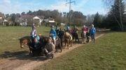 Tierpfleger Pferdepfleger