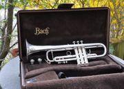 Bach Stradivarius Trompete ML 43