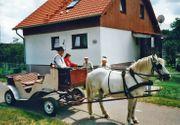 Ferienwohnung im Müritz-Nationalpark Granzin 22a