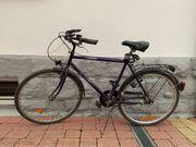 Citybike Herrenrad Fahrrad mit Tacho