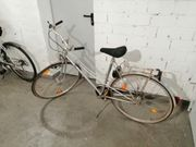 Fahrrad KTM