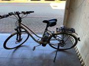 Herren E-Bike der Marke Flyer