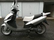 125 Roller RIVERO Phönix in