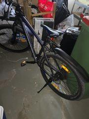 Herren Fahrrad 29 zoll