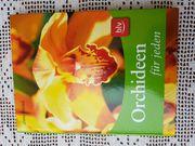 Orchideen für jeden