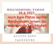Access Bars Tageskurs