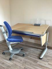 Moll Schreibtisch in Heusenstamm - Haushalt & Möbel - gebraucht und ...
