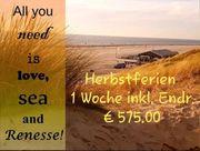 Chalet in Renesse Zeeland zu