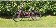Gebrauchtes lila Mädchen Fahrrad alles