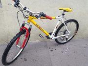 Fahrrad MTB 26 Zoll