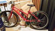 Mountainbike 26 Zoll 21 Gänge