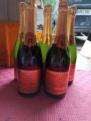 5 Flaschen 1998 Chardonnay Champagne