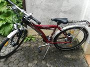 Rotes 26 Zoll Unisexrad Marke
