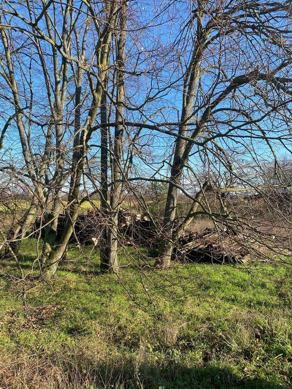 Suche Gartengrundstück Ackergrundstück