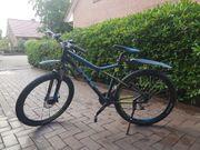 Mountainbike Sharptail von BULLS