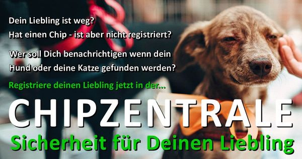Chipzentrale - Internationale Datenbank für Hunde