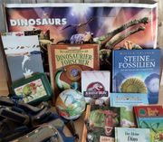 Dino Paket