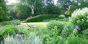 Gartengrundstück gesucht