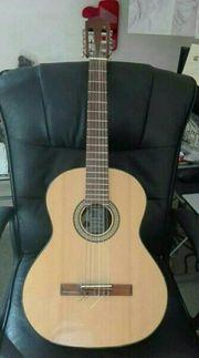 Konzertgitarre Pro Arte 150 II