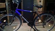 McKenzie Fahrrad 28