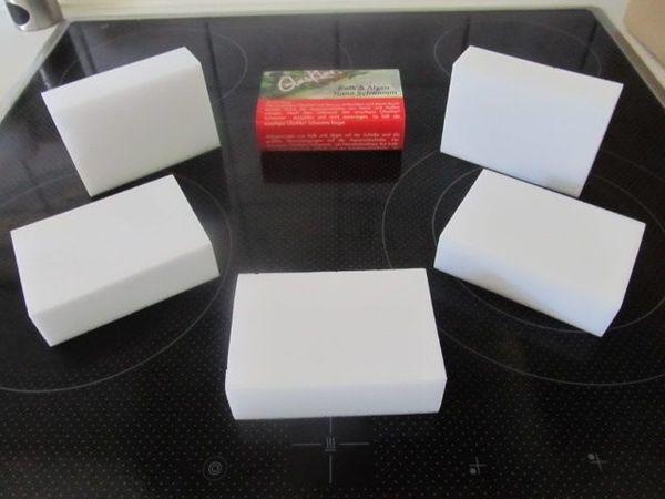 Kalkradierer Schwämme Algenschwämme zu verkaufen