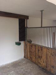 Paddockbox Stall Box frei in