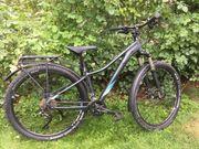 Mountain Bike CUBE Access WS