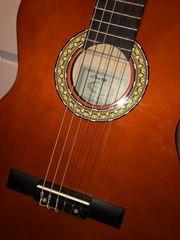 Konzertgitarre ein optimales Einsteigerinstrument für