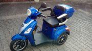 E-Trike Elektromobil