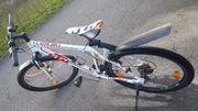 KTM Jugendrad 24 zoll