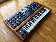 Moog Voyager PE