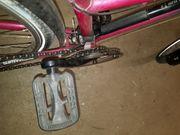1 Fahrrad 26er