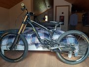 Polygon Downhill Bike